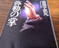 【小説】弥勒の掌|ネタバレ感想